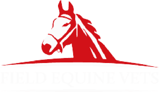 Field Equine Vets